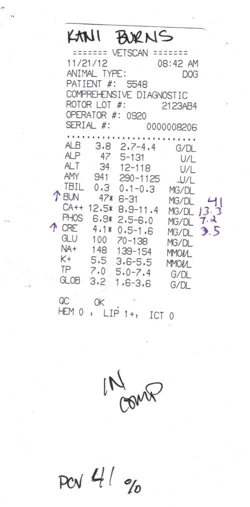 Kani Nov 2012 results 001